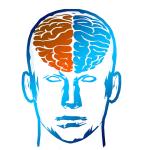 brain-2836404__480